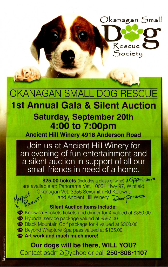 Small Dog Gala at Ancient Hill